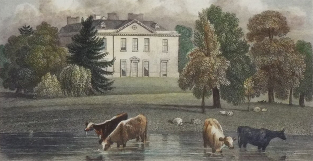 Detail from 'Langley Park, Buckinghamshire' drawn by J.P. Neale (Image from Rare Old Prints)